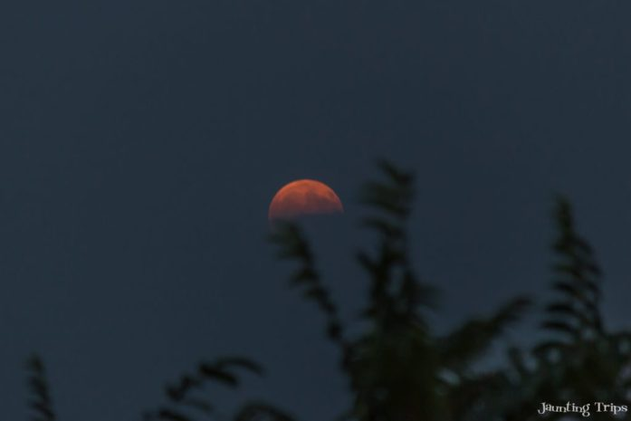 red-moon-rising