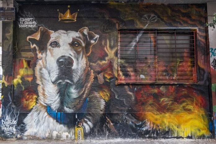 loukanikos-dog-athens-graffiti