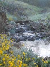 Seasonal creek
