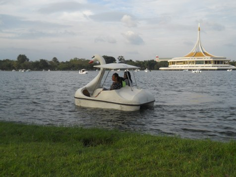 You can rent pedal boats