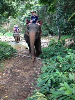 Elephant trekking on Ko Chang