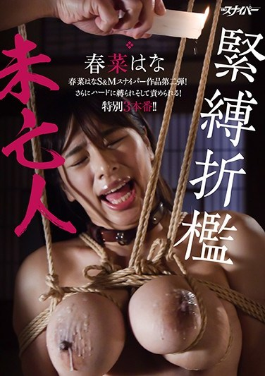 [SD-016] S&M Spanking Of A Tightly Bound Widow Hana Haruna