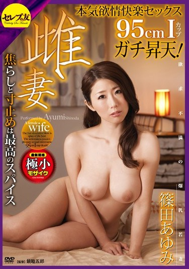 [CETD-223] 95cm Bust-Sized Ayumi Shinoda's Lust Filled Ultimate Pull Out Wife Fuck!