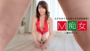 M Pelacur: Sakura Kazuki