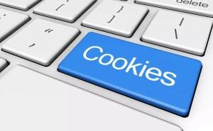 Importancia política de Cookies