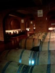 Bodega de Vino, Malbec
