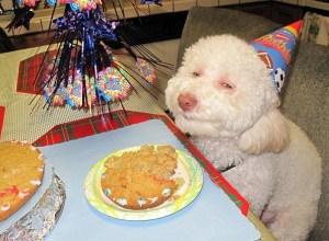 Cumpleaños JavierPeris.Com