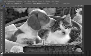 как сделать картинку черно-белой в фотошопе