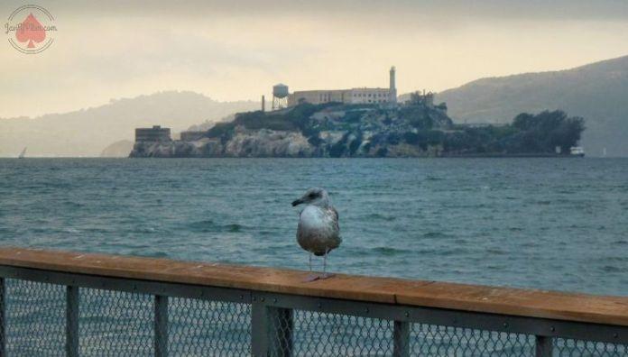 Vista de la isla de Alcatraz desde Fisherman's Warf (San Francisco). Foto de septiembre de 2014