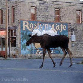 "Roslyn Cafe. ""Doctor en Alaska"" (""Northern Exposure"")"