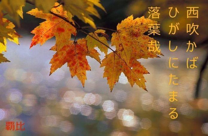 haiku de otoño