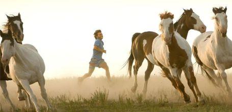 """Libre entre corceles. """"Hacia rutas salvajes"""" (""""Into the Wild"""", 2007)"""