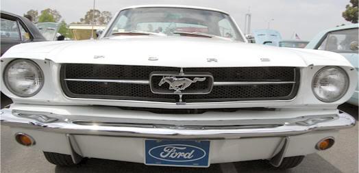 Mustang 65