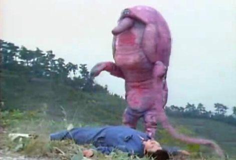 """""""Pink Armadillo"""", el frikismo televisivo de Japón"""