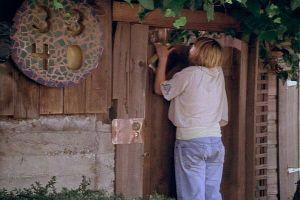 """Wildflowers"" (1999)"