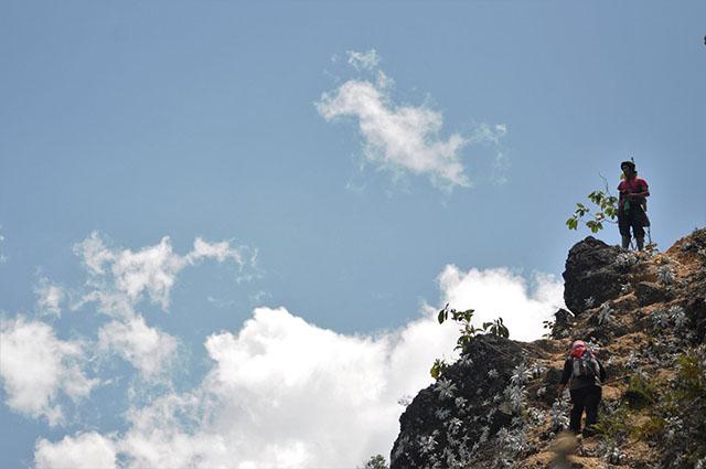 jalur-pendakian-leuser