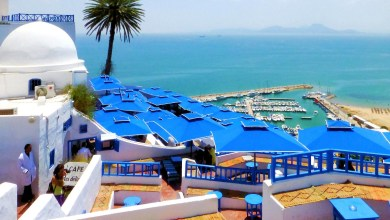 "Photo of تونس الخضراء ""بلد الجمال"""