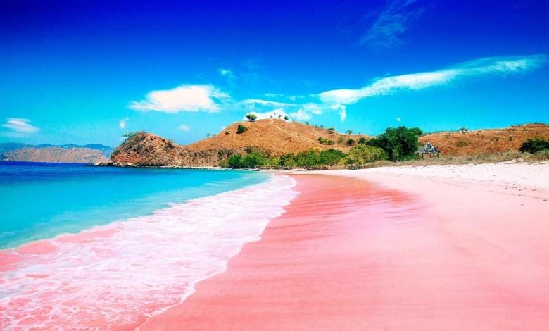 ما سبب اللون الوردي لشاطئ كومودو بأندونيسيا؟