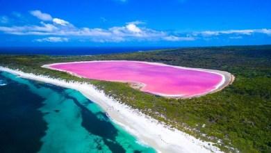 """ما سبب اللون الزهري لبحيرة """"هيلير"""" في أستراليا؟"""