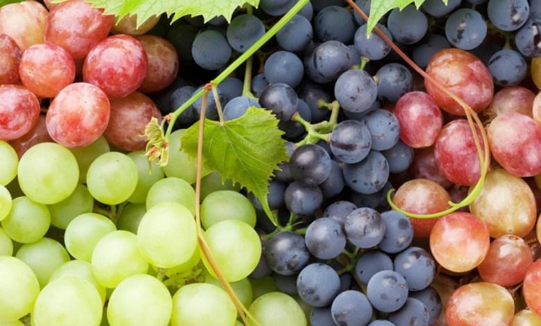 ماذا يحدث عند الإفراط في تناول العنب؟