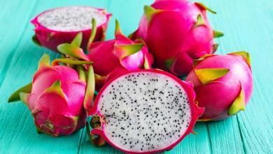 تعرف على أغلى أنواع الفاكهة في مصر