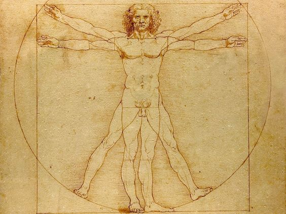 Vitruvian man - sketch in which multiple expertise of da Vinci came together.