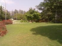 Lawns in front of hostel.