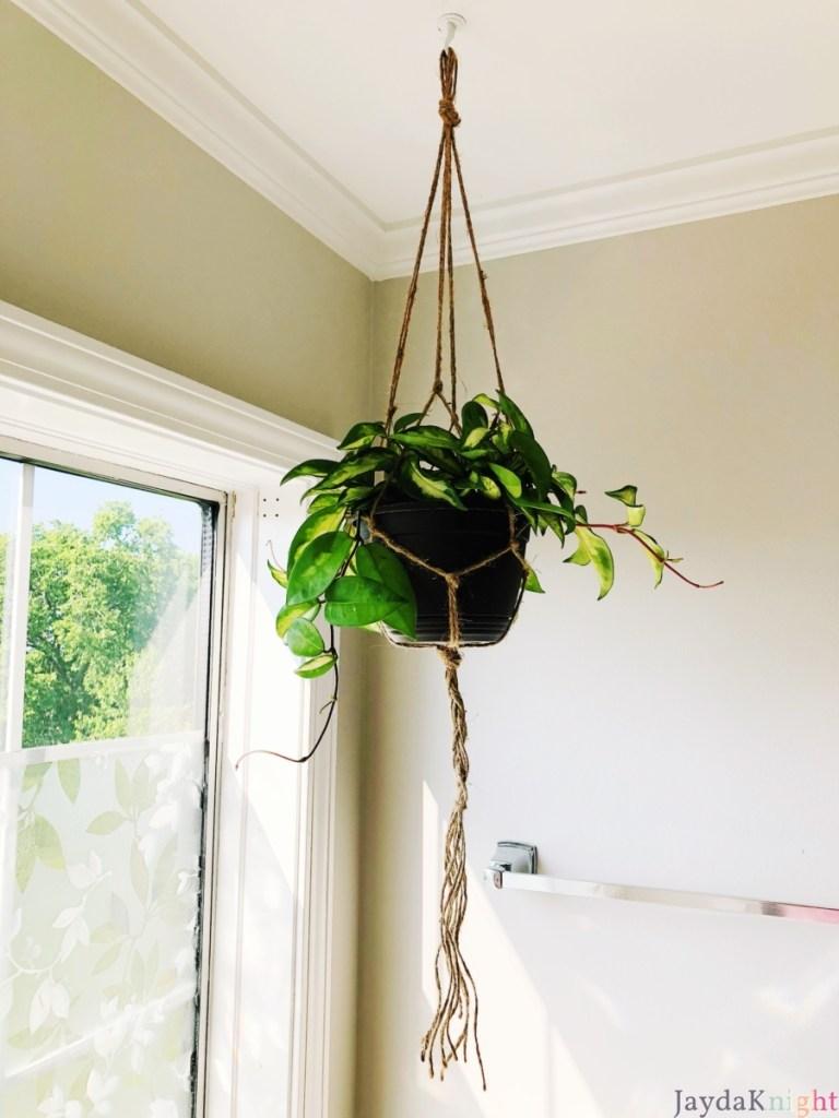 DIY Easy Macramé Plant Hanger