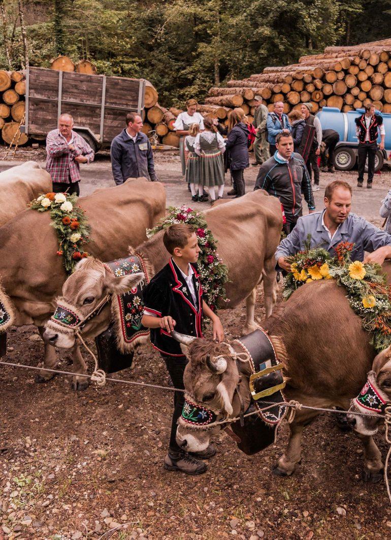 A trip to Entlebuch - Alpine Cattle Descent