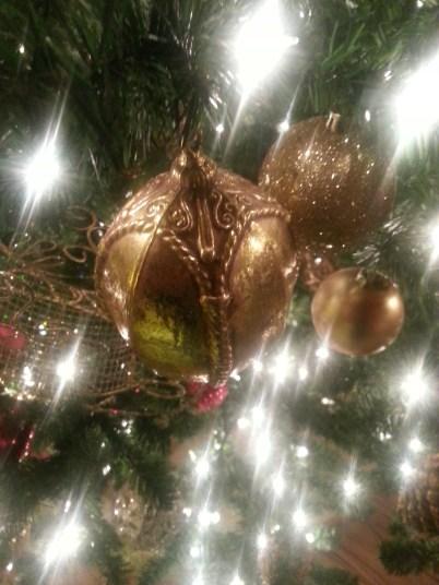 Christmas 2012 Flagstaff, Arizona