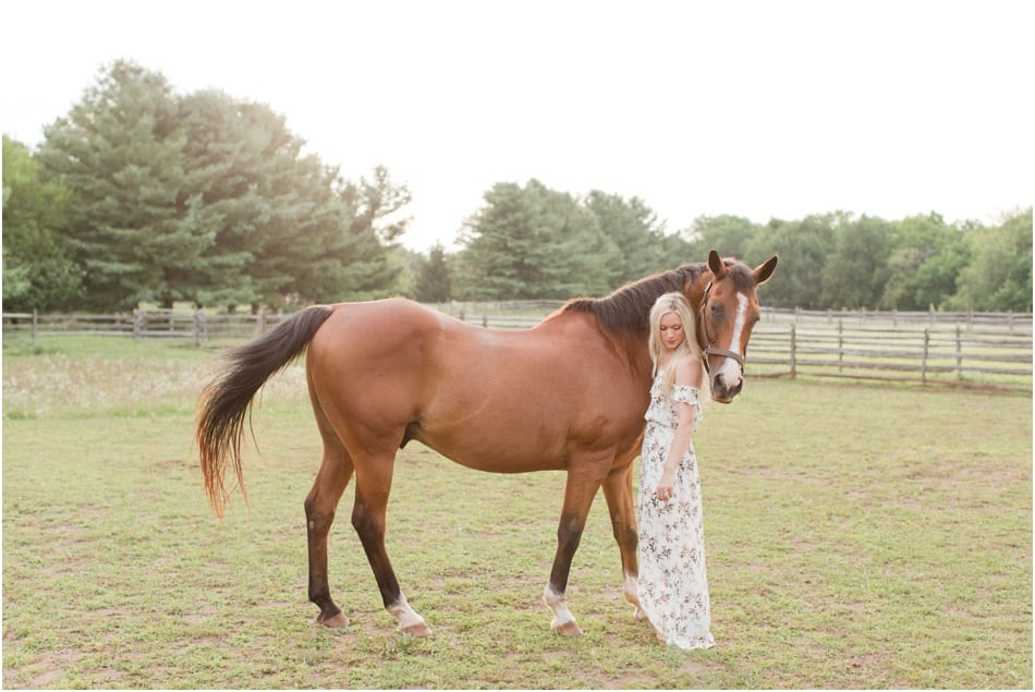 New Jersey horse farm engagement photos, tricks to teach your horse, engagements in New Jersey, Princeton New jersey photos