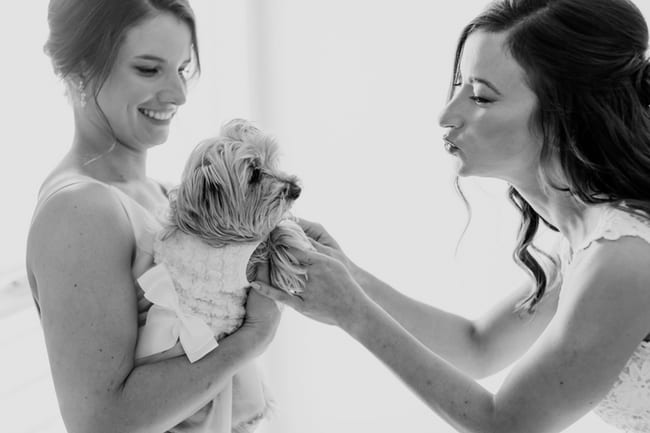 A black and white candid photo of the maid of honor holding the brides small dog, which is dressed in a white dress, while the bride plays and coos with the dog