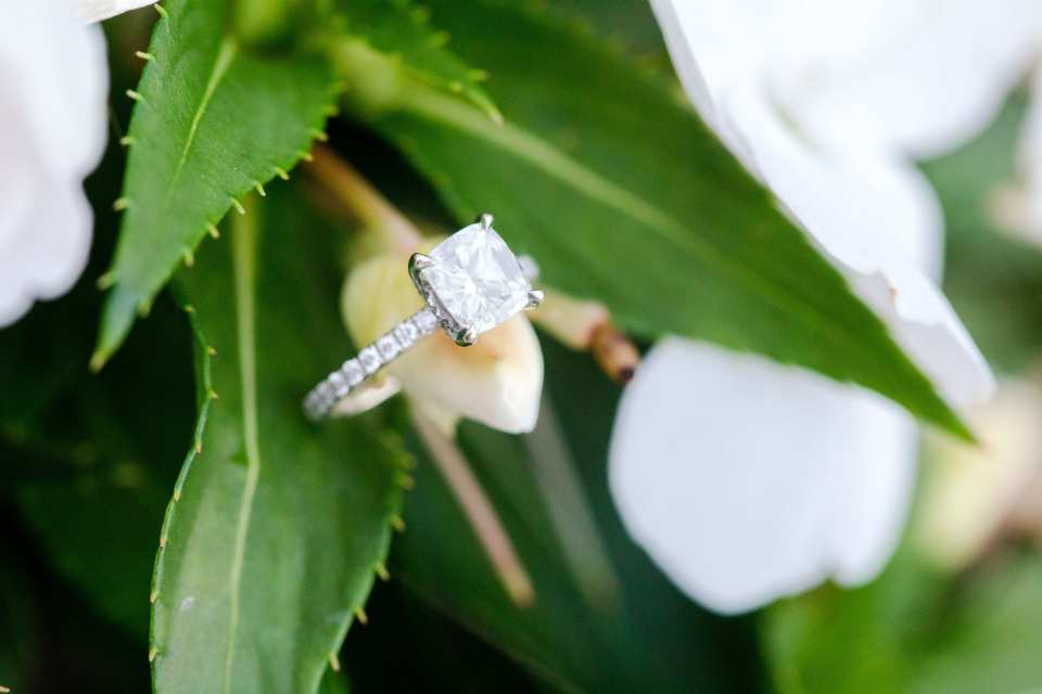 Brides diamond solitaire engagement ring in princess cut, on a diamond band, by Carats and Stones, displayed on leaves by New Jersey wedding photographer Jaye Kogut Photography