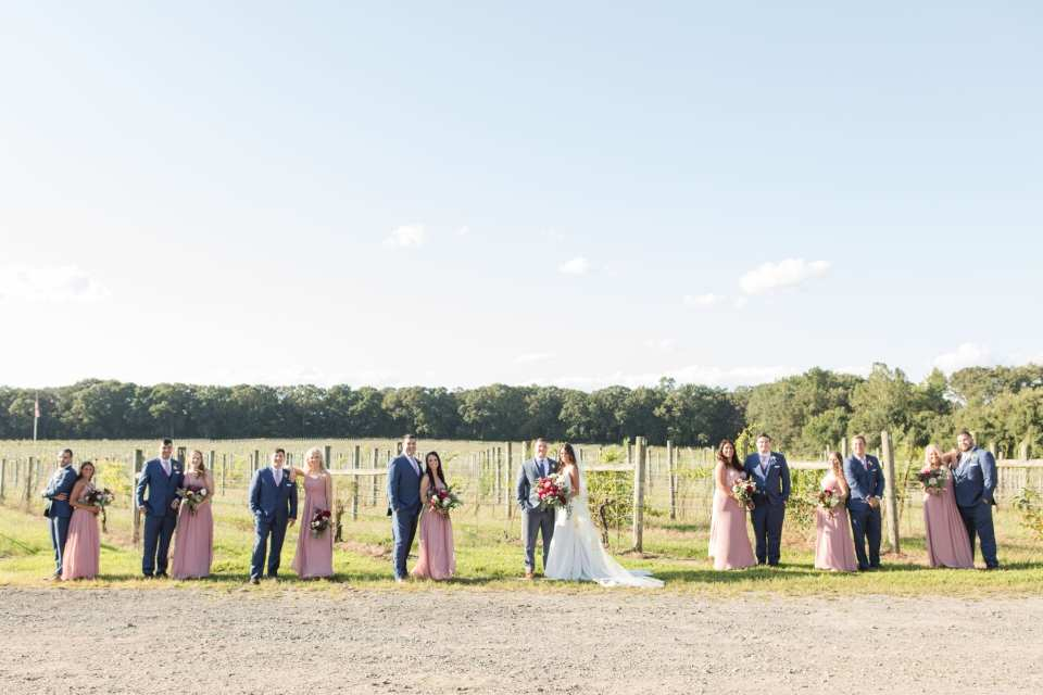 Unique formal wedding party photo amongst the vines at Laurita Winery in Central New Jersey