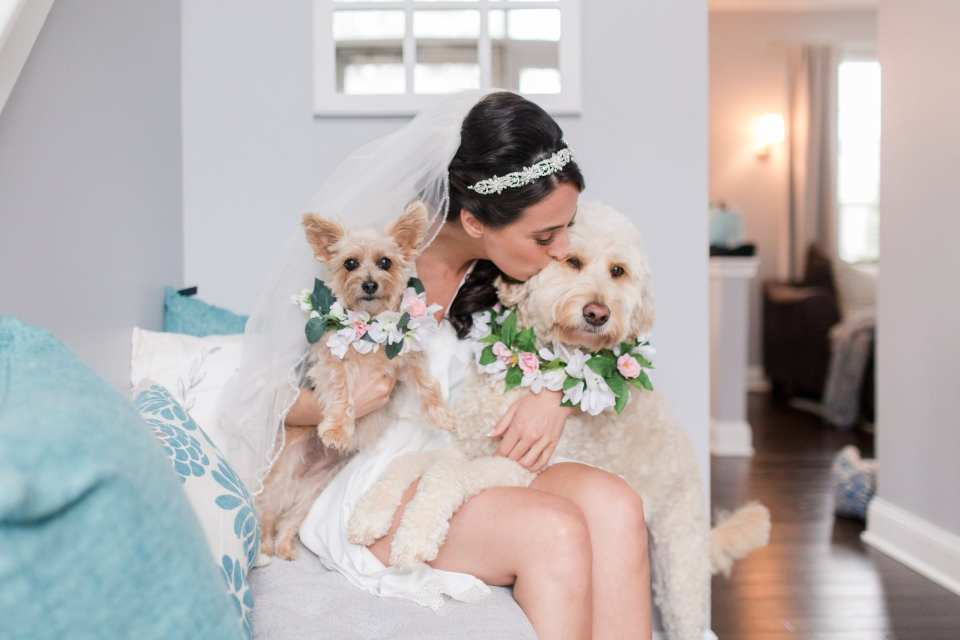 The bride kissing her dogs, whom have custom floral collars on