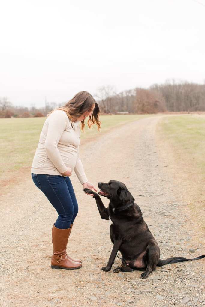 Pregnant Mom to be profile, shaking hands with her black lab