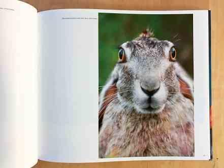 then-now-fine-art-photo-book-7