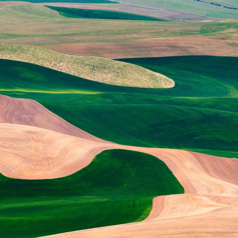 Palouse Photo Adventure photo by Jay Goodrich