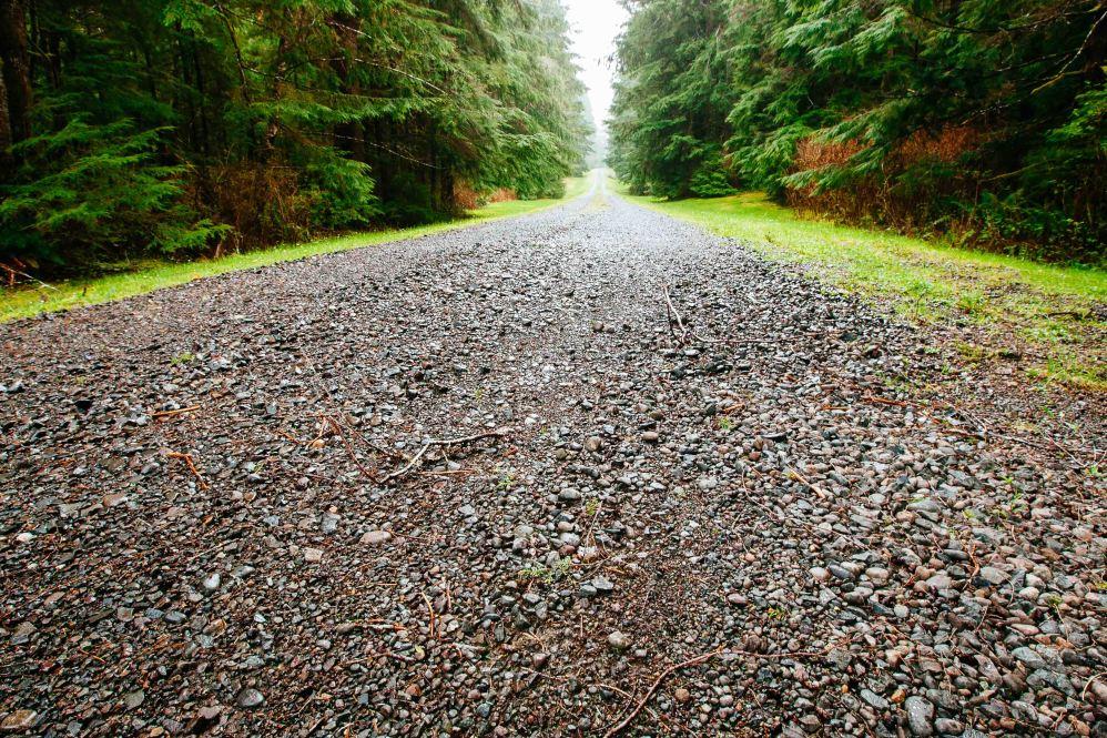 Redwoods Coast Photo Adventure by Jay Goodrich