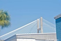 savannahbridge_0499_2