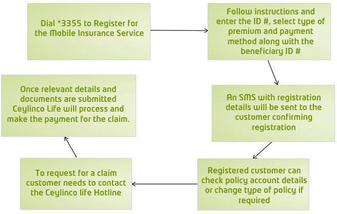 etisalat-insurance-process