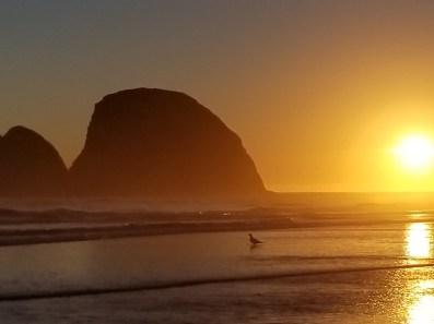 Oregon Coastline II