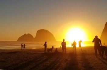 Oregon Coastline III