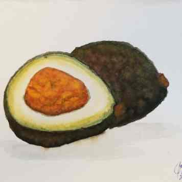 avocado study