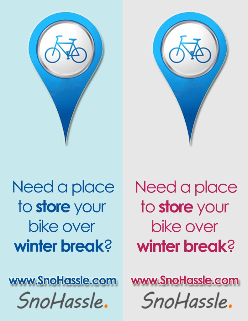 Snohassle Flyer2