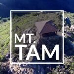 Climbing Mt. Tam in Northern California