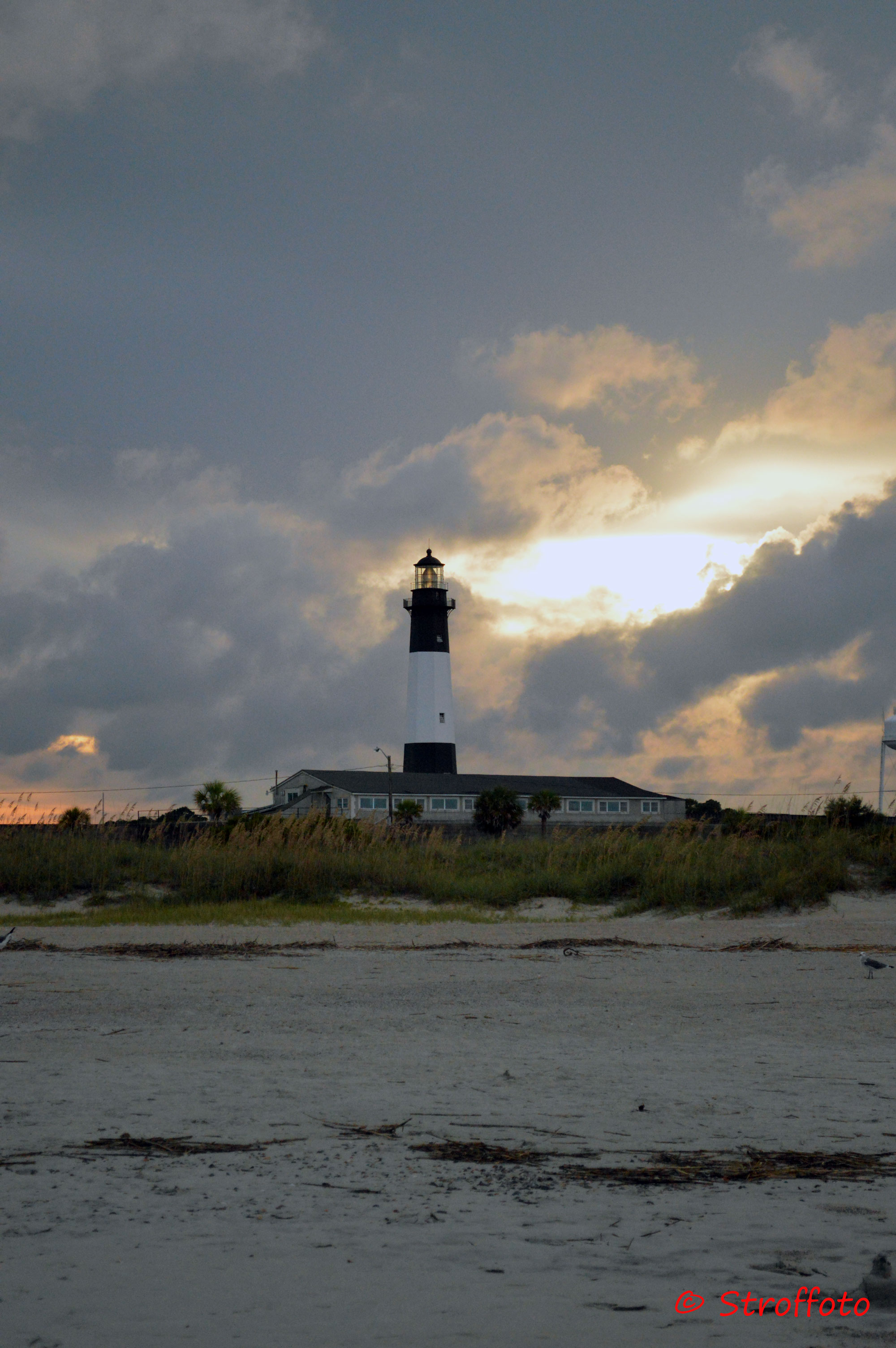 Tybee Island Lighthouse From The Beach