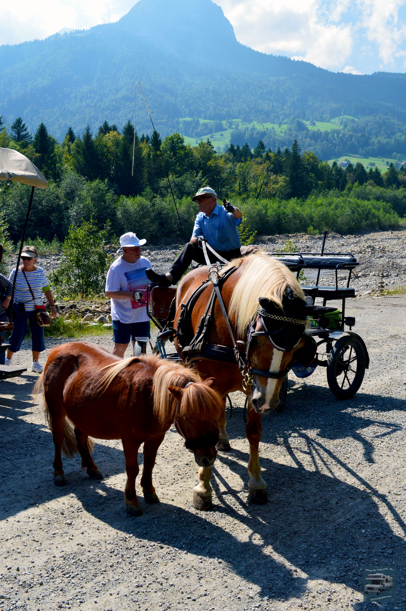 Giswil Horse & Buggy