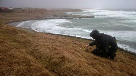 trochę dalej od brzegu było jakby łatwiej