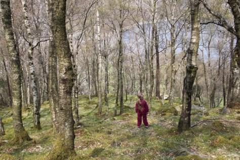 gdzieś w lesie